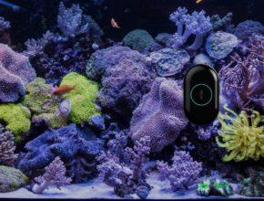 Robot nettoyeur d'aquarium Moai